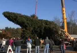 Rockefeller Center Christmas Tree Cutting