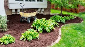 How To Apply Mulch Properly Garden Maintenance Tips
