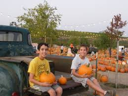 Pumpkin Patch Farm Temecula by Pumpkin Patch Peltzer Farms Temecula Living In The Temecula Valley
