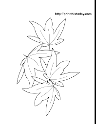 Maple Leaves Autumn Coloring Page