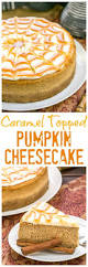 Pinterest Pumpkin Cheesecake Snickerdoodles by Best 25 Recipe For Pumpkin Cheesecake Ideas Only On Pinterest