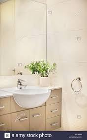 badezimmer dekoration mit ausgefallenen grünpflanzen auf der