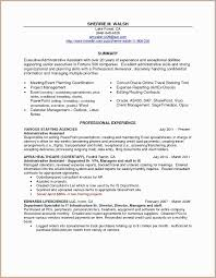 Resume Summary Examples For Administrative Assistants Professional Awesome Powerpoint