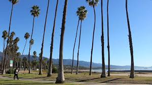 Santa Barbara Beach Sidewalk Palms California Path With Palm Trees And Sand Stock Video Footage