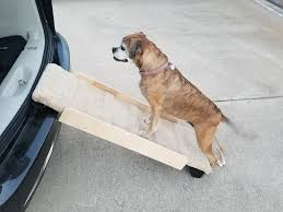 Dog Ramp For Cars, Trucks, & SUV's For Pets Up To 80 Pounds   4'L X ... Dog Ramps Light Weight Folding Traders Deals Online Petstep Benefits Prevents Back Strain From Lifting A 30 Pound Dog Alinum Youtube Stair Ideas Invisibleinkradio Home Decor Pet Gear Full Length Trifold Ramp Chocolate Black Chewycom Amazoncom Petsafe Solvit Waterproof Bench Seat Cover Bed Truck 2019 20 Top Upcoming Cars Mim Safe Telescoping Dogtown Supply Beds Traing Cat Products Easy Animal Deluxe Telescopic Smart Petco In Gourock Inverclyde Gumtree