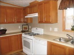 What Color To Paint Kitchen Great Colors With Oak Cabinets