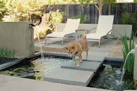 8 Backyard Ideas To Delight Your Dog | HuffPost Backyard Ideas For Dogs Abhitrickscom Side Yard Dog Run Our House Projects Pinterest Yards Backyard Ideas For Dogs Home Design Ipirations Kids And Deck Bar The Dog Fence Peiranos Fences Install Patio Archcfair Cooper Christmas Lights Decoration Best 25 No Grass Yard On Friendly Backyards Compact English Garden Inspiring A Budget With Cozy Look Pergola Awesome Fencing Creative