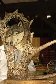 Moose Shed Antler Forums by 48 Best Antlers Images On Pinterest Moose Antlers Antler Art