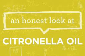 what is cymbopogon nardus citronella oil