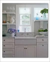 Ikea Domsjo Double Sink Cabinet by Kitchen Rooms Ideas Wonderful Install Domsjo Sink Next To