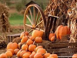 Best Pumpkin Patches Near Milwaukee by Basse U0027s Taste Of Country We Grow Memories Colgate Wi