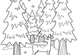 Nature Coloring Pages Printables