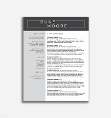 Sample Law Enforcement Resume Amazing Legal Samples Free Download Examples Word Best