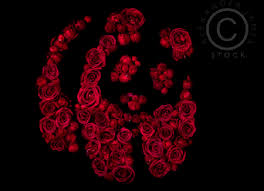 underwater roses still wwf panda logo 0275 welcome to the