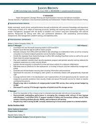 IT Project Manager Resume Example Net Software Developer