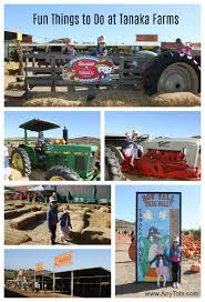 Tanaka Farms Pumpkin Patch Directions by Tanaka Farms Hello Kitty Pumpkin Patch Any Tots