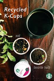 How To Make A K Cup Herb Garden Remove The Lids From Your Used