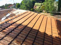 what s the difference between roof paint and exterior paint
