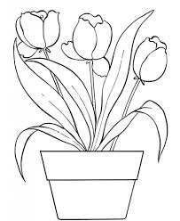 Coloring Pages Of Flower Pots Educational In Pot Page Pertaining To Really