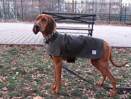 filson dog coat sizing all the best coat in 2017