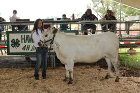 4-H Livestock Show & Sale, June 15-16 | Big Island Now 11 Aloha Airin Ohana Magazln Hawaii Where Guestbook 62017 The 33rd Annual Helen M Cassidy Memorial Juried Art Show 7 Verified Reviews Of Bridle Suite Bookingcom Mayjune 2019 By Ke Ola Magazine Issuu North Shore Oahu Ocean Front And Vacation Rentals Beachfront Wy Wolf Delisted Vironmentalists Howl Lawsuit New Route Submitted Paradise The Pacific Page 2 Notes From Kohala Jeans Things Home Facebook Rocking Chair Ranch Waimea Hi Untappd Leonora Prince
