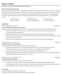 Click Here To Download This Business Development Executive Resume
