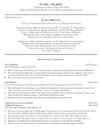 Professional Nursing Resume Examples Example Objectives Profile