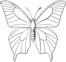 Butterfly Christmas Free Clip Art To Color And Print Coloring