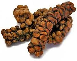 That Thought Did However Occur To Those Who Came Up With The Idea For Kopi Luwak Coffee Made From Digested Partially Fermented Beans Expelled