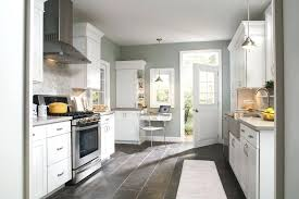 Benjamin Moore Creekside Green Beautiful Sea Gull Lighting In Kitchen Traditional With Haze Next To
