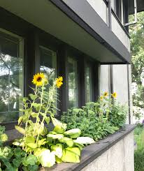 American Home Design Reviews Unforgettable Sunflowers House Plan ... 100 American Home Design Reviews Fniture Great Bathroom Sweet Tuscan Style House Plans South Africa Awesome Pictures Interior Affordable African 2018 Amazon Com Chief Architect Stunning Complaints Decorating Best Goodttsville Tn Contemporary Beautiful Los Angeles Gallery Unforgettable Sunflowers Plan