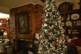 Best Variety Of Christmas Tree by Impressive Design Old Fashioned Christmas Trees Today There Are