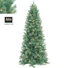 Barcana 45Foot Alaskan Deluxe Fir Christmas Tree With 250 Clear