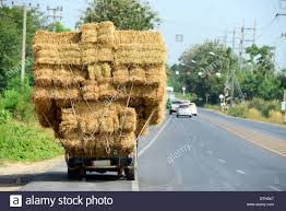 Hay Truck On The Road In Thailand Stock Photo: 66848299 - Alamy Filerefueling Hay Truckjpg Wikimedia Commons Highway 99 Reopens In South Sacramento After Hay Truck Fire Fox40 Semi Truck Load Of Kims County Line Did We Make A Small Stock Image Image Biological Agriculture 14280973 Boys Life Magazine Old With Photo Trucks Rusty 697938 Straw Trailers Mccauley Richs Cnection Peterbilt 379 At Truckin For Kids 2013 Youtube Hay Train West Coast Style V1 Truck Farming Simulator 2019 John Deere Frontier Implements Landscape Mowing Dowling Bermuda Celebrity Equine Llc