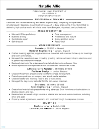 Unique Resume Professional Summary Examples Customer Service | Your ... Sample Curriculum Vitae For Legal Professionals New Resume Year 10 Work Experience Professional Summary Example Digitalprotscom Customer Service 2019 Examples Guide View 30 Samples Of Rumes By Industry Level How To Write A On Of Qualifications Fresh For Best Perfect Retail Included Unique Atclgrain Free Career Smaryume Manager Teachers