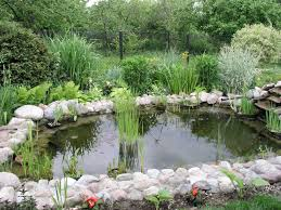 Triyae.com = Making A Backyard Pond For Fish ~ Various Design ... Beautiful This Is The Design I Would Pick Just Fill In Fresh Ideas Fish Pond Design Koi Pictures Sustainable Backyard Farming How To Dig A Raise What Should You Build Ponds And Waterfalls To Make It Diy A Natural Your Institute Of Garnedgingsteishplantsforpond Garden With Waterfall Mini Outdoor Installation Hgtv Picture Home Fniture Ce Pontz Sons Landscape Koi Fish Pond Garden Ideas 2017 Dignforlifes Portfolio Designs Small Backyard Ponds
