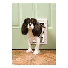 Pet Doors For Patio Screen Doors by Pet Doors Dog U0026 Cat Doors And Pet Gates At Ace Hardware