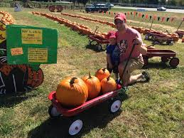 Pumpkin Patches Around Dayton Oh by One Of The Loveliest Little Farm Markets In Town Lovely U0027s In