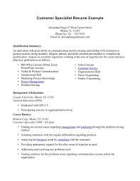 Summary Resume Examples Example Of