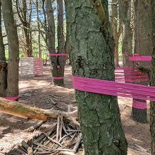 Types Of Kichler Landscape Lighting Zen Backyard Landscaping