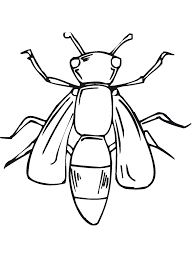Download Coloring Pages Bugs Free Printable Bug For Kids