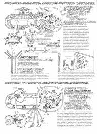 Kaplan Anatomy Coloring Book Reviews 17 Best Foundations Images On Pinterest