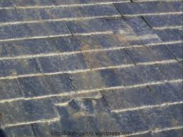 slate roof tile manufacturers cost china plastic and tiles prices