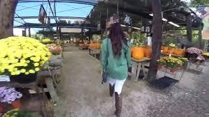 Oak Glen Pumpkin Patch Yucaipa by Pumpkin Patch Trip Live Oak Canyon Youtube