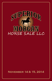 Stoltzfus Sheds Madisonburg Pa by 2014 Superior Morgan Horse Sale Catalog Web By Agsales Issuu
