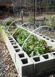 Raised Garden Cinder Block