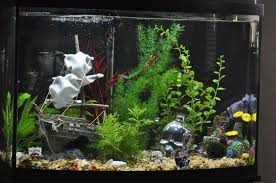 Star Wars Fish Tank Decorations by Interior Design Fresh Aquarium Decor Themes Amazing Home Design