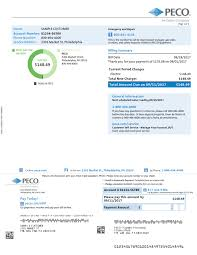 Sample Home Electric Bill