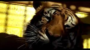 3rd Coast Digital Films And The Tiger Truck Stop Present Dinki ... Shocking Tiger Truck Stop Commercial Youtube New Photos Of 72011 Courtesy M Haik Free Stop Owner Plans To Pursue Another Tiger Stuff Tony For Stops Controversial Mascot Put Rest At The Yes There Really Is A The Stoplive Gas Station Louisiana Famous 2017 September 28 2015 2 Police Truck Carrying Skins From Buddhist Temple Keep Roaring For A Dodo Community Page Is Here Stay Vice
