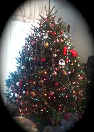 Christmas Tree Cataract Seen In by December 2014 A Napper U0027s Companion